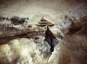 Grotte de Lascaux, Mission photograhique de l'Institut National Géographique dans la grotte de Lascaux en 1966 après sa fermeture au public