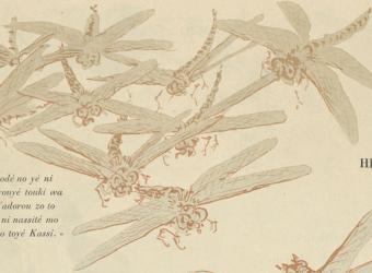 Poèmes de la libellule,Yamamoto Hosui, Beauvais, MUDO, musée de l'Oise