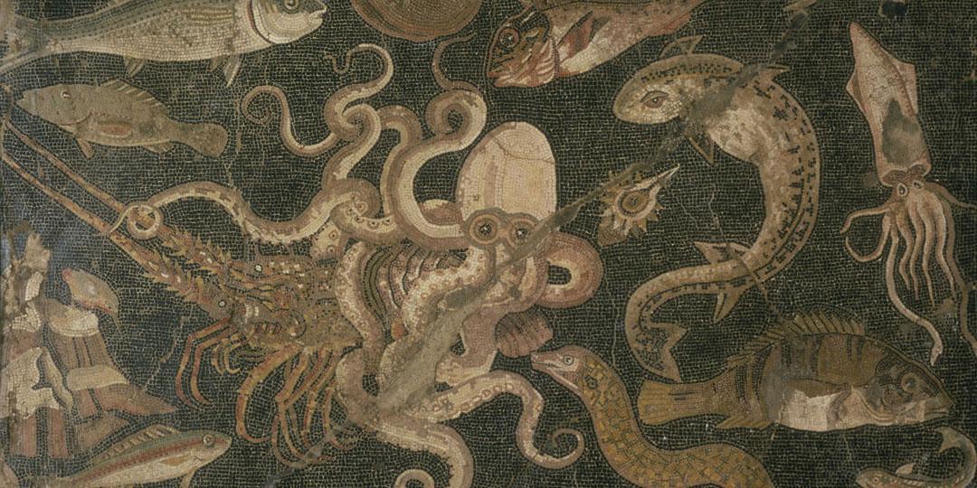 Maison aux cinq étages: Bataille entre une pieuvre et un homard, Italie, Naples, Musée Archeologique national