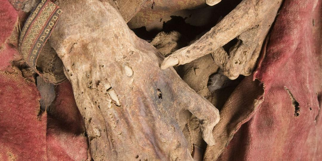 Male mummy known as